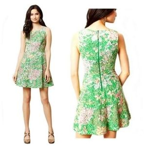 ANTHROPOLOGIE MAEVE Lace Verbena Fit & Flare Dress